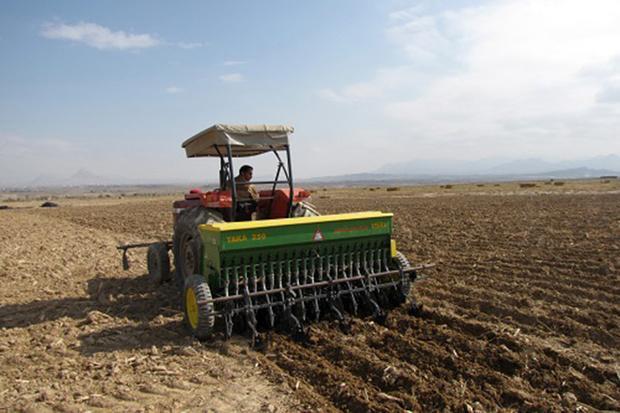 شروع کشت پاییزه در 43 هزار هکتار از اراضی کشاورزی کهگیلویه
