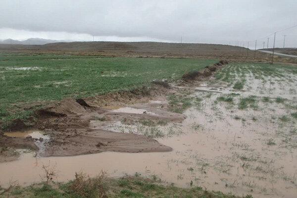 خسارت 330 میلیارد تومانی توفان و سیل به بخش کشاورزی
