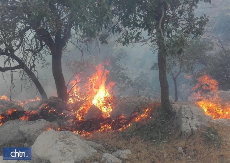 مهار آتش سوزی در جنگل ابر و پناهگاه حیات وحش خوش ییلاق شاهرود